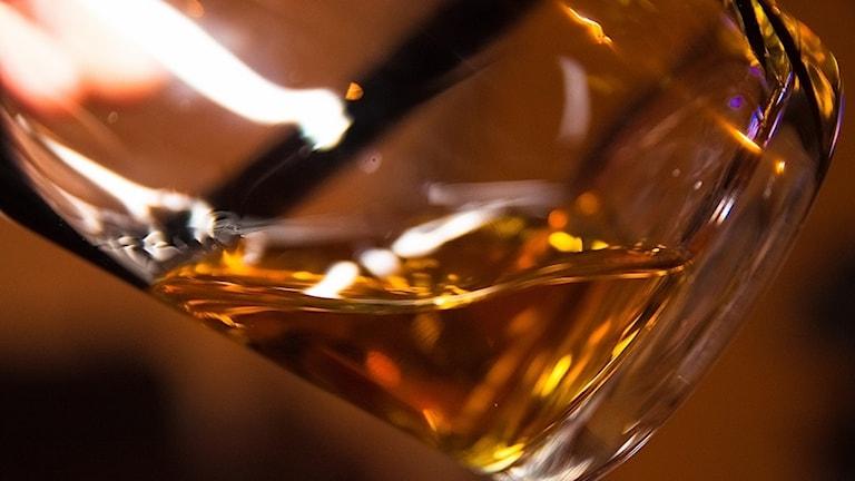 Ett whiskyglas i närbild. Glaset är lite lutat och ljuset reflekteras i glaset.