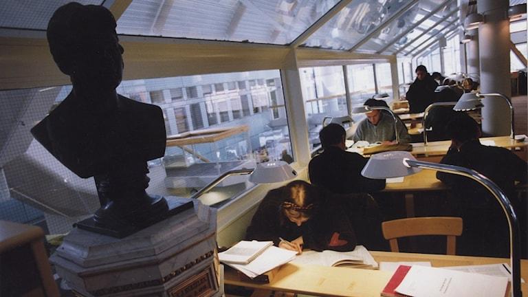 Studenter sitter och pluggar i biblioteket på Stockholms universitet.