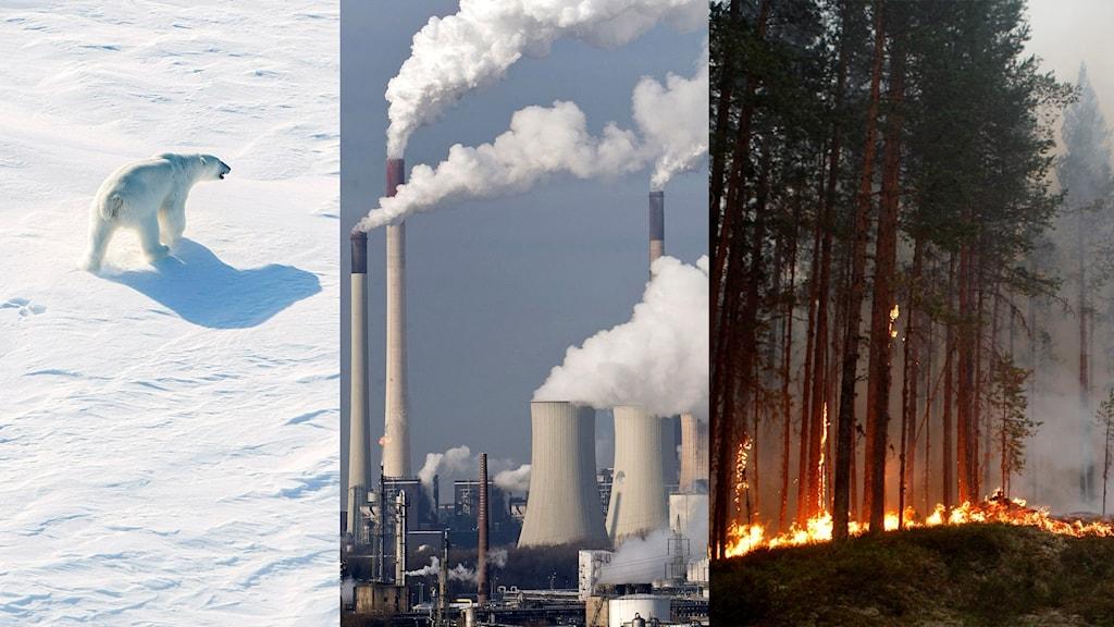 klimatpaketbild