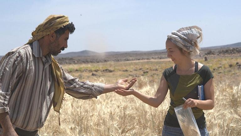 Två personer vid ett fält i Subayqa Jordanien