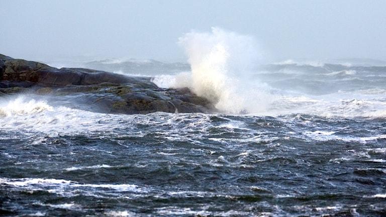 Storm på västkusten jan 2007.