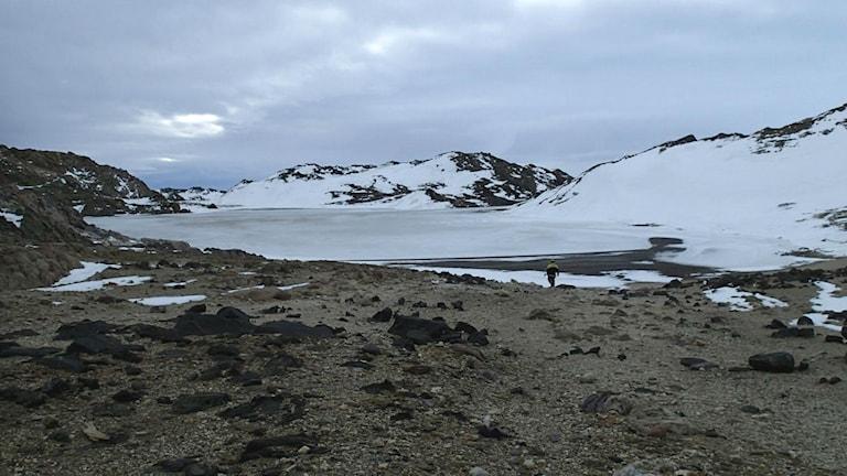 Sjön Rauer Island lake på Antarktis.