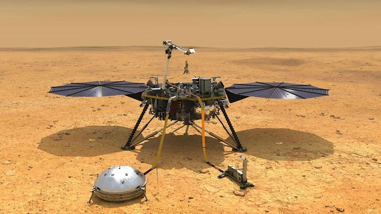 En konstnärs bild av marslandaren Mars InSight på planetens yta.