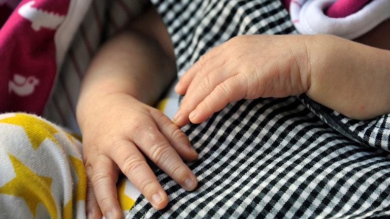 Bebis händer