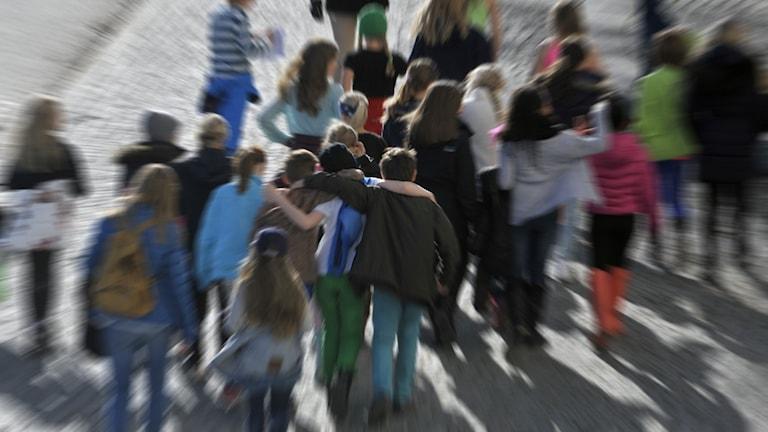 En grupp med skolbarn på promenad.