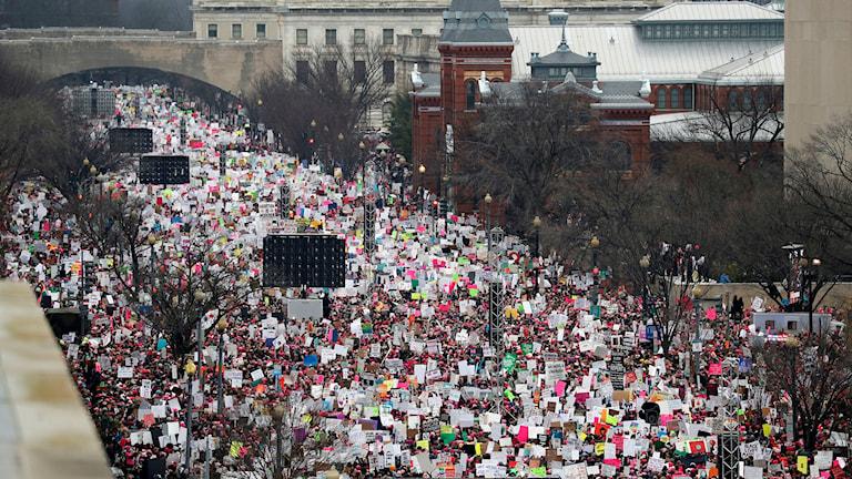 Fågelperspektiv över enorm mängd demonstranter