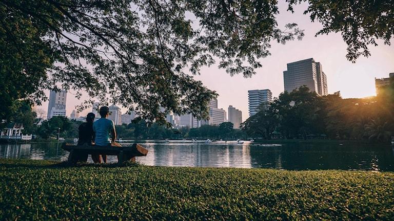 Två personer sitter på en bänk i en park framför en liten sjö med höghus i bakgrunden.