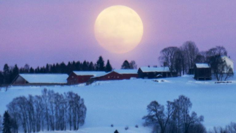 Stor mån hänger över ett snöigt jordbrukslandskap med röda stugor och lador.