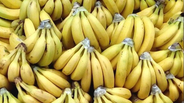Bananer upplagda på en butikshylla.