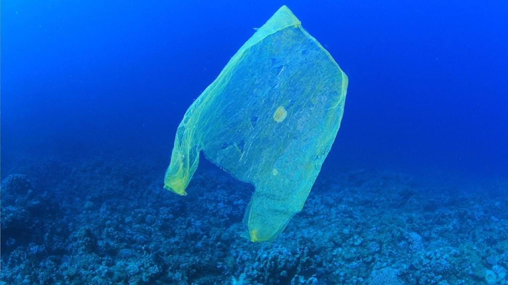 Plastpåse flyter runt i havet.