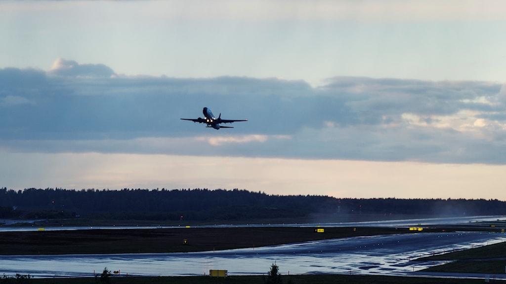 Ett flygplan lyfter från Arlanda.