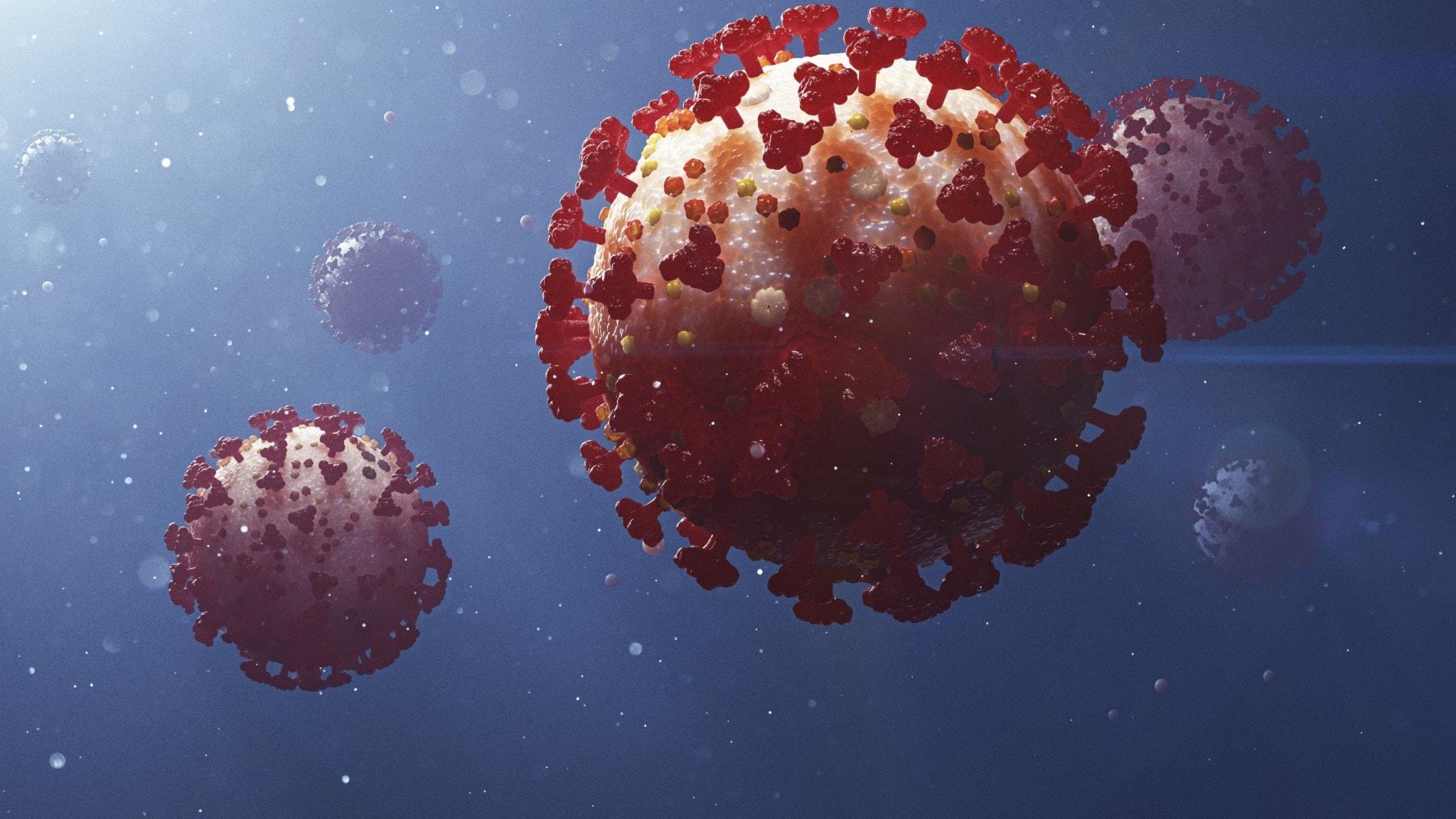 Illustration av coronaviruset.