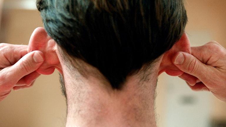 Man drar i sina öron