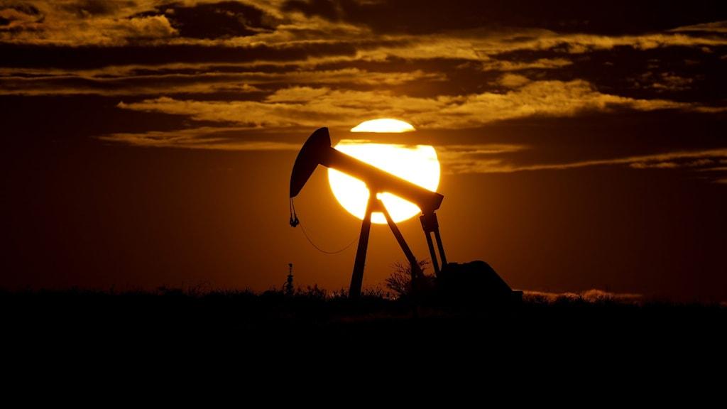 Oljeutvinning på land i Texas.