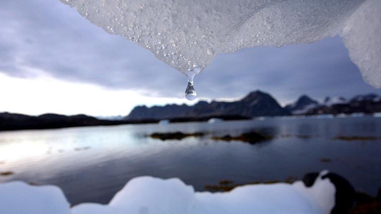 Vattendroppe från is och under den is, hav och berg.