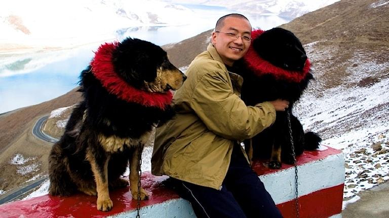 En man sitter mellan två tibetanska hundar, kramar den ena.