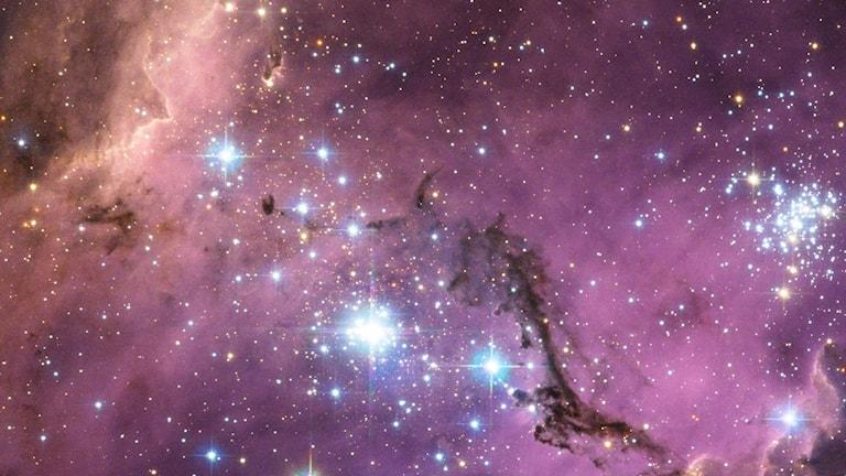 Rosa molnaktig bakgrund med strålande stjärnor.