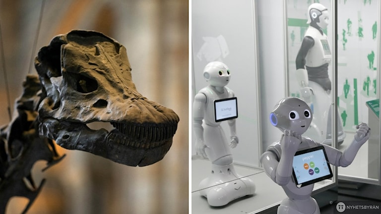 kollage mellan en dinosaurie och en robot
