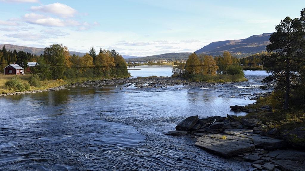 Utsikt över Gautsträsk vid Ammarnäs