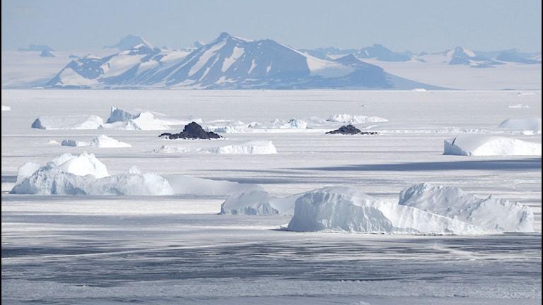 berg sticker upp ur Antarktis is