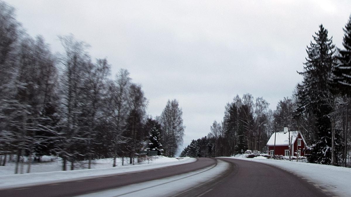 500 mil i snön (foto: Billy Rimgard/Sveriges Radio)