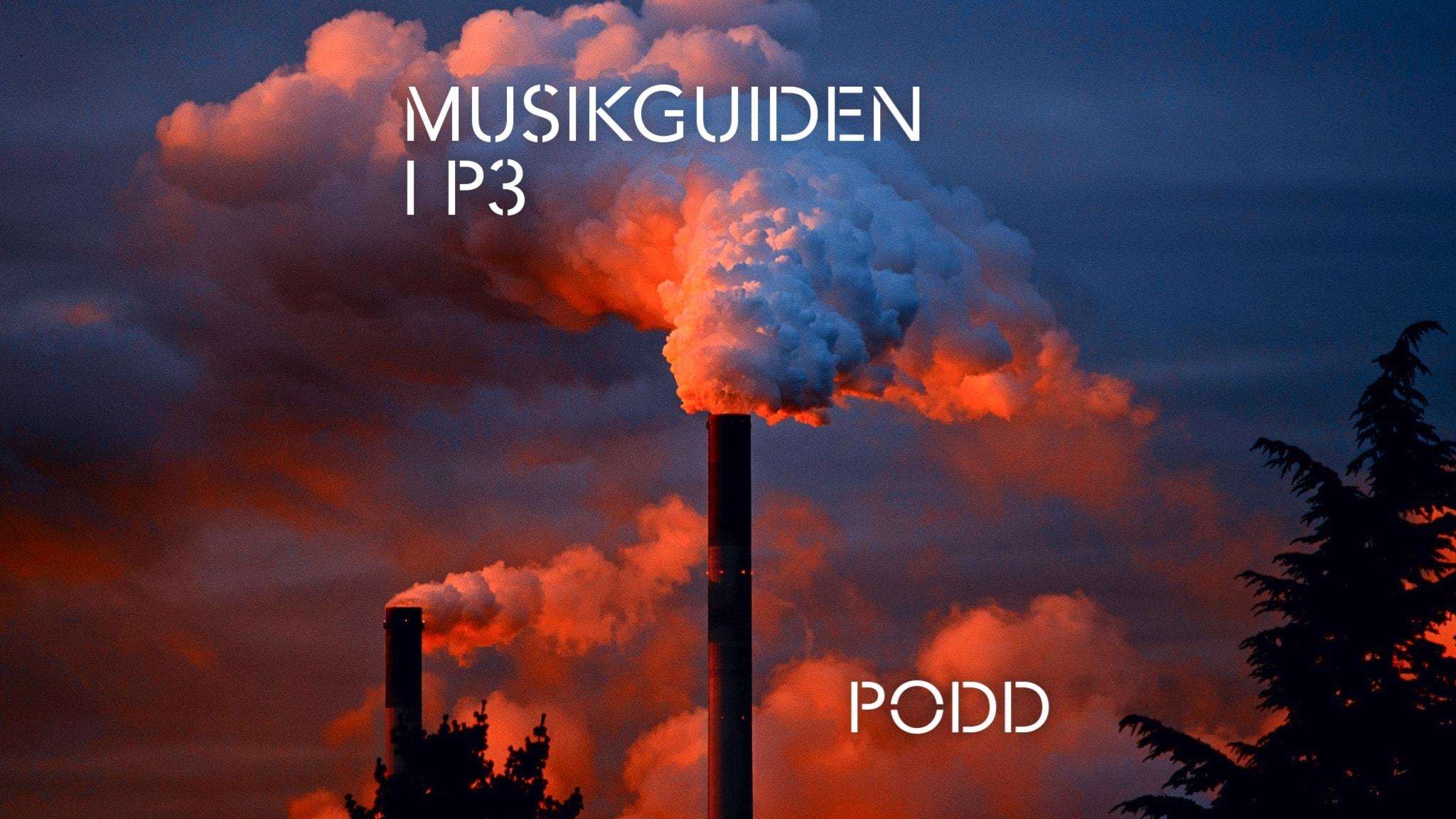 Musikguiden i P3s podd om miljö och festival