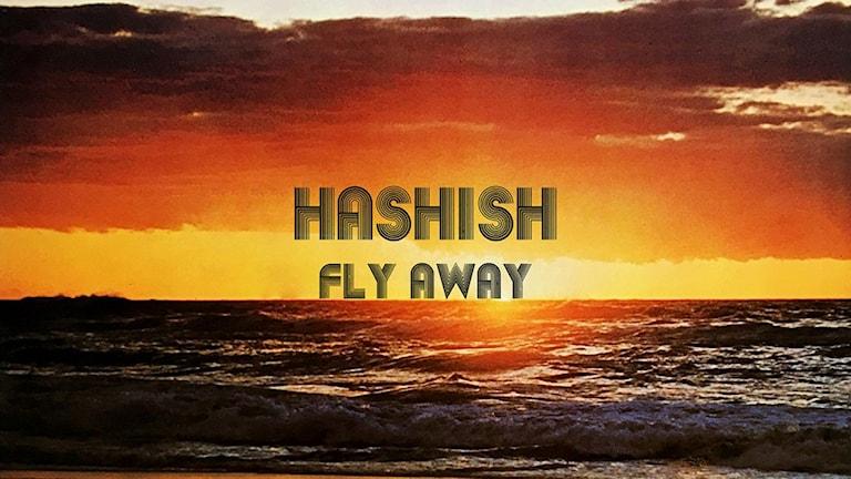 Hashis Fly Away omslag