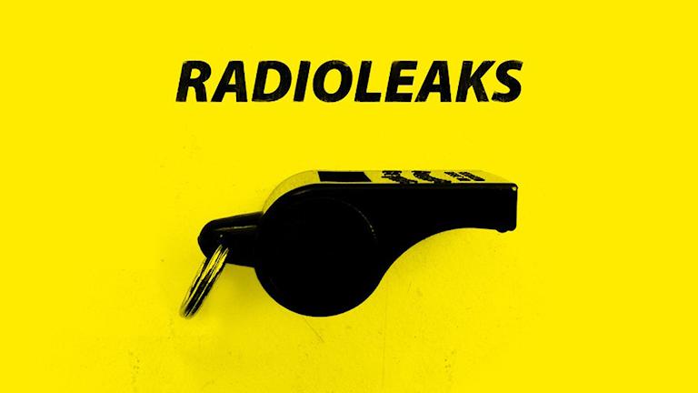 Programbild för Radioleaks