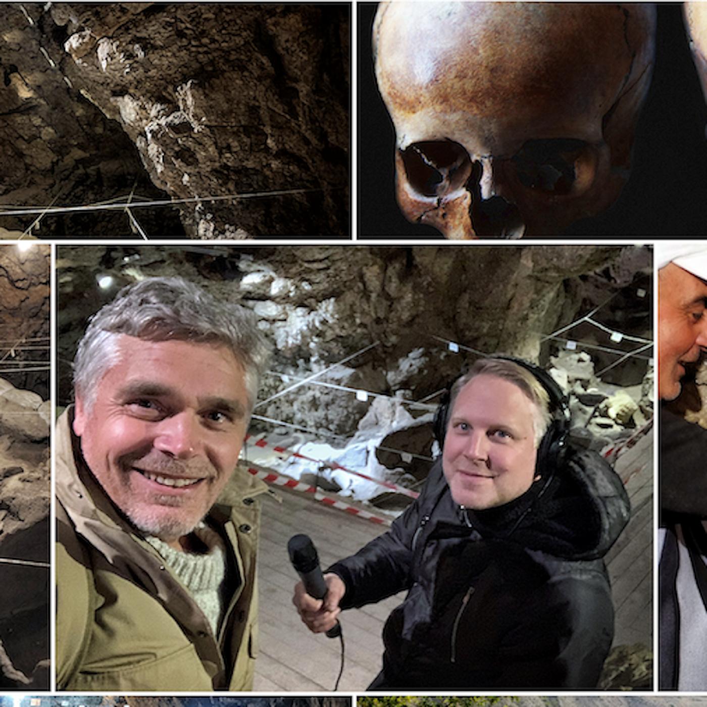 Expedition Noa - vingrottans hemligheter