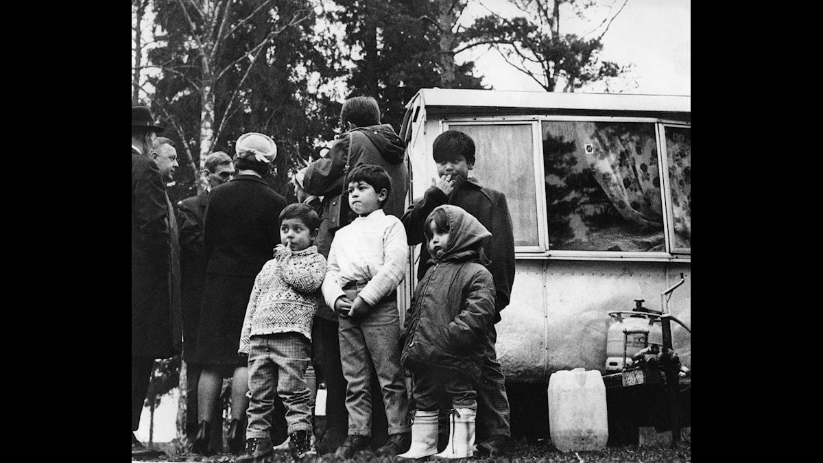 Romer i Flaten 1967.