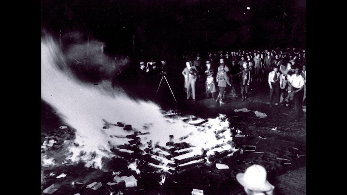 Nazistiska bokbål i maj 1933, som skymmer sikten för de mer omfattande bokplundringarna. Foto TT Nyhetsbyrån