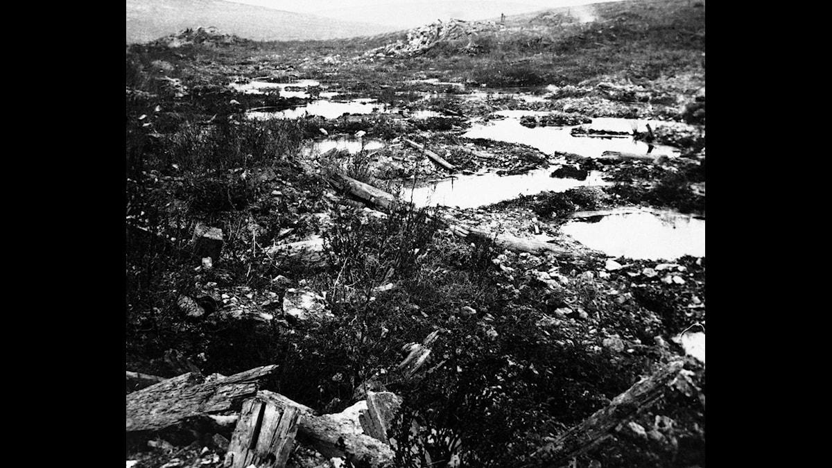 Slagfält i närheten av Verdun.