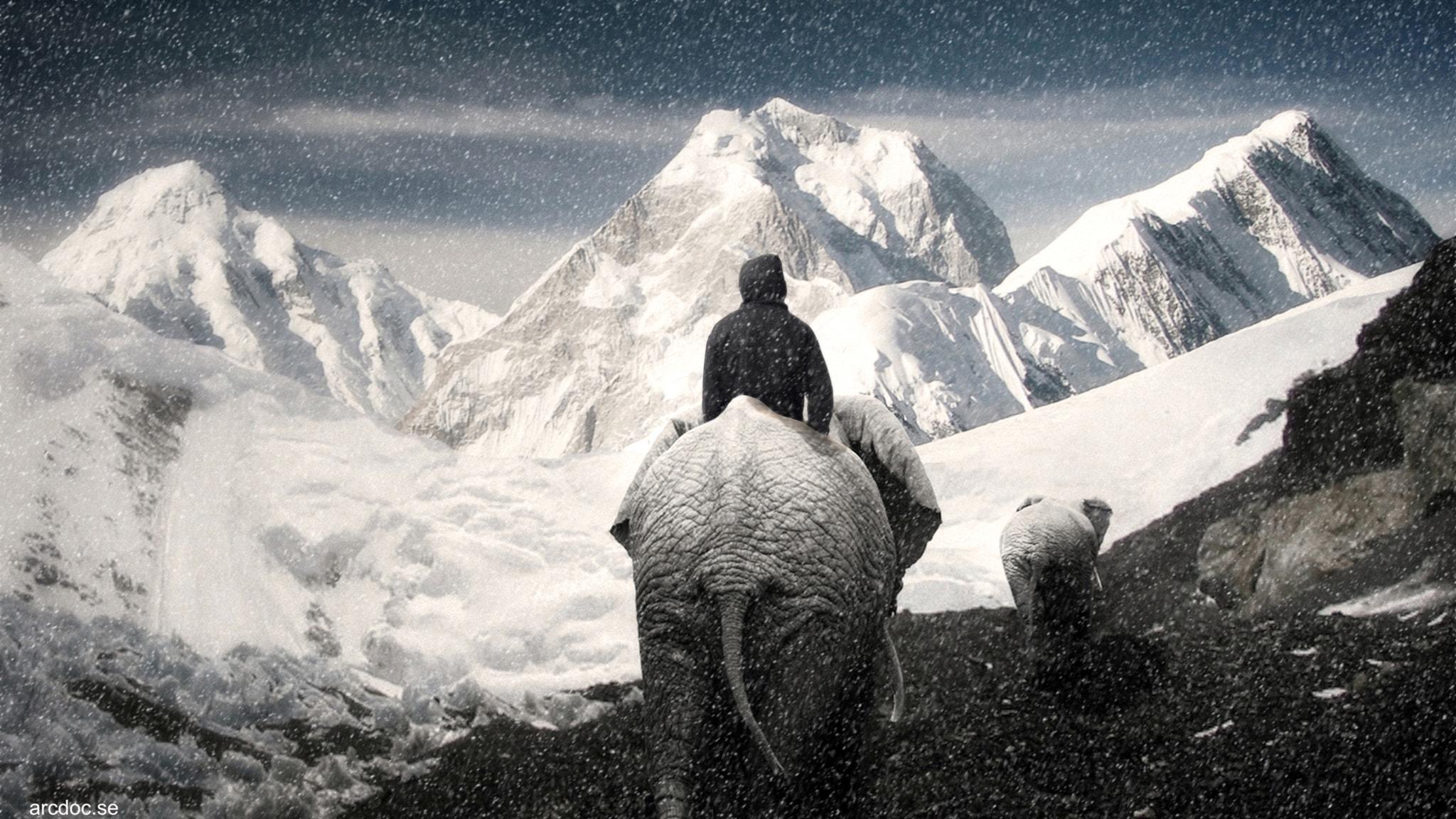 Hur gick det egentligen till när Hannibal marscherade med elefanter över Alperna för 2 200 år sedan?