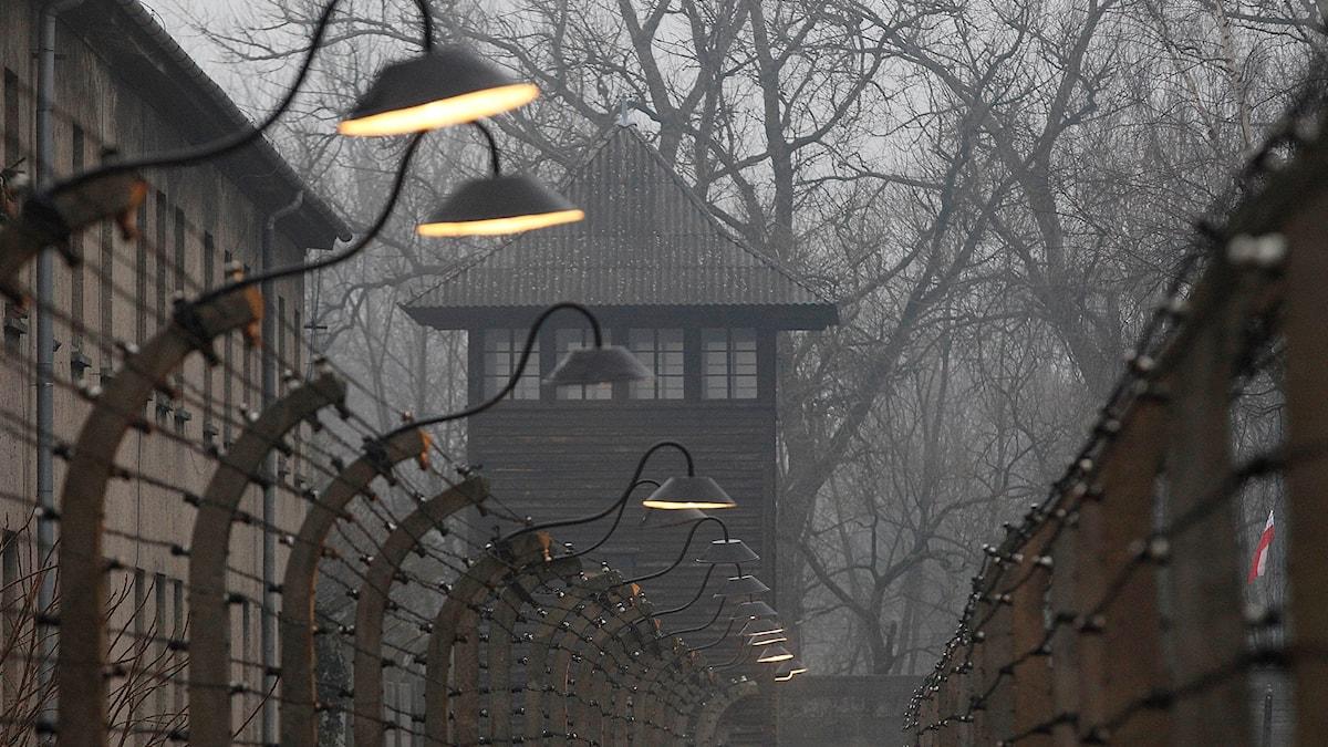 Hur sparar vi minnena från koncentrationslägren?