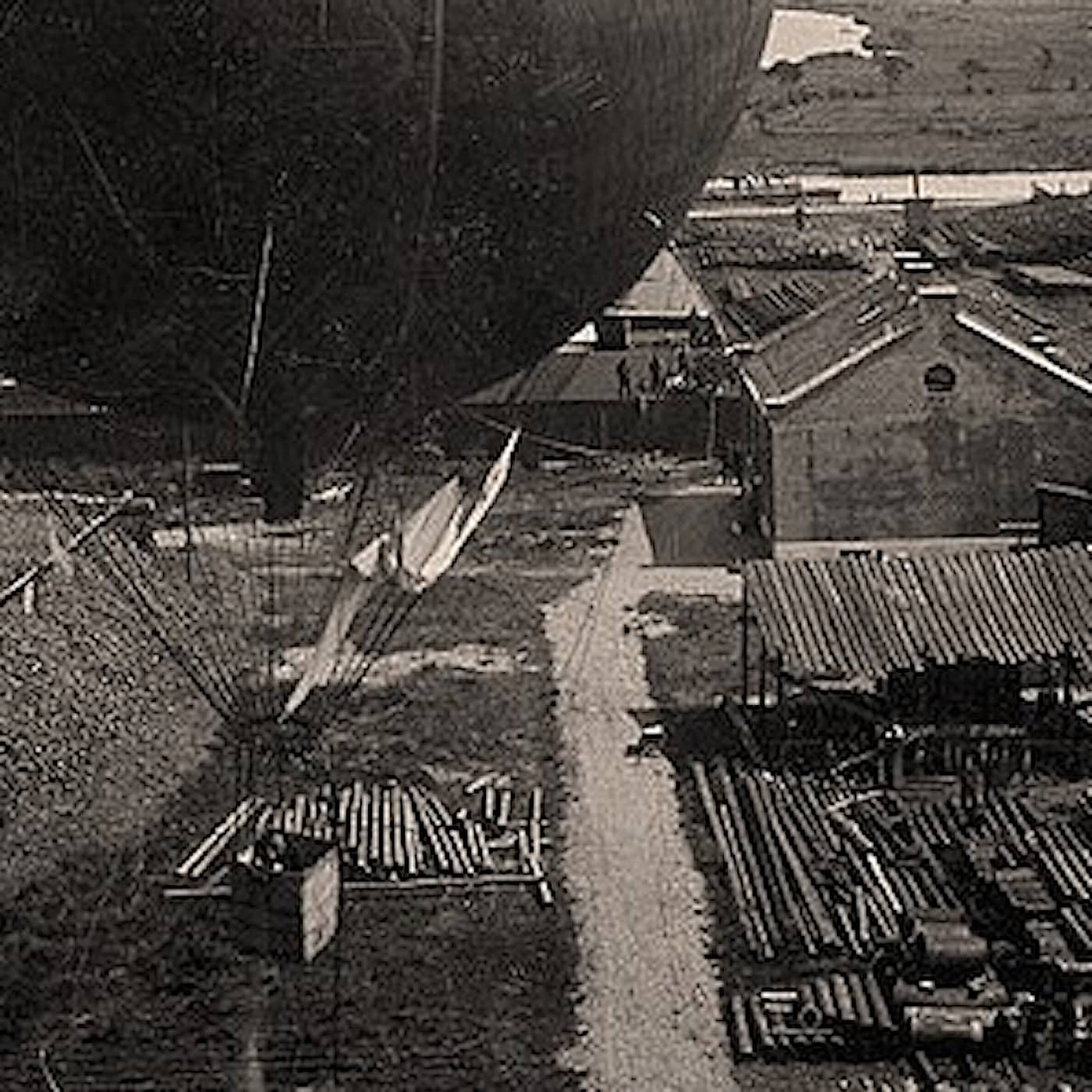 Andrées galna ballongflygningar