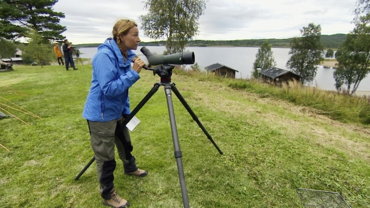 Martina Haag i Det stora fågeläventyret.