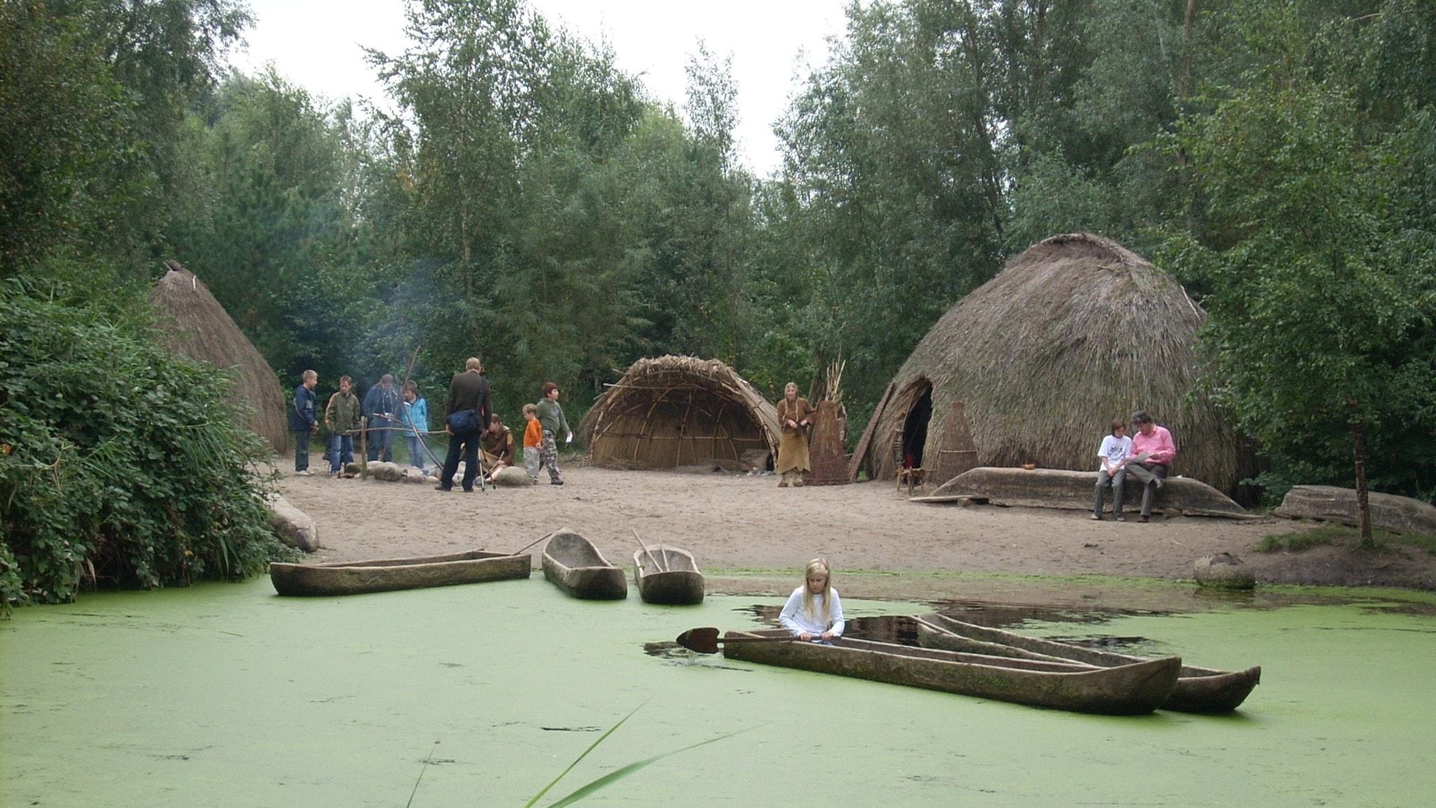Rekonstruktioner av 8000-åriga stenåldershyddor - men husen i Sölvesborg var mycket större!