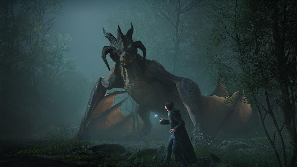 Harry Potter står framför en stor drake.
