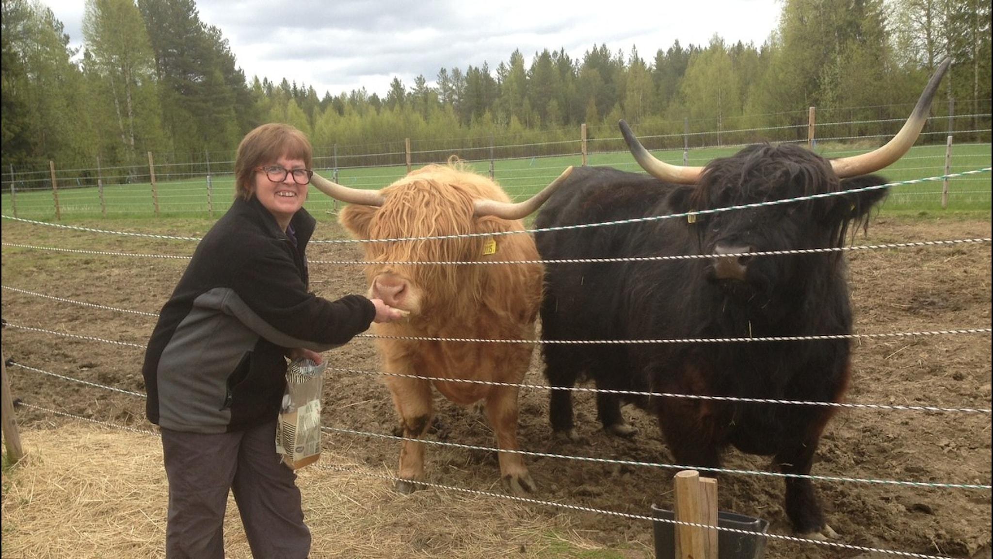 Ingrid Schweikert Dargel i Gafsele. Foto: Erica Dahlgren/Sveriges Radio