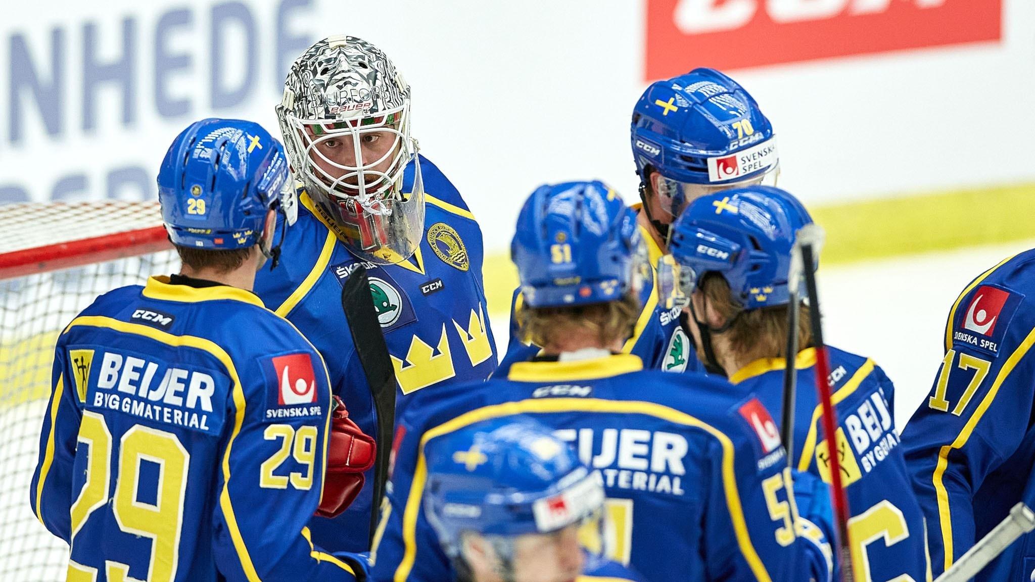 Spelar från Tre kronor, svenska ishockeylandslaget sedda mestadels bakifrån på isen.