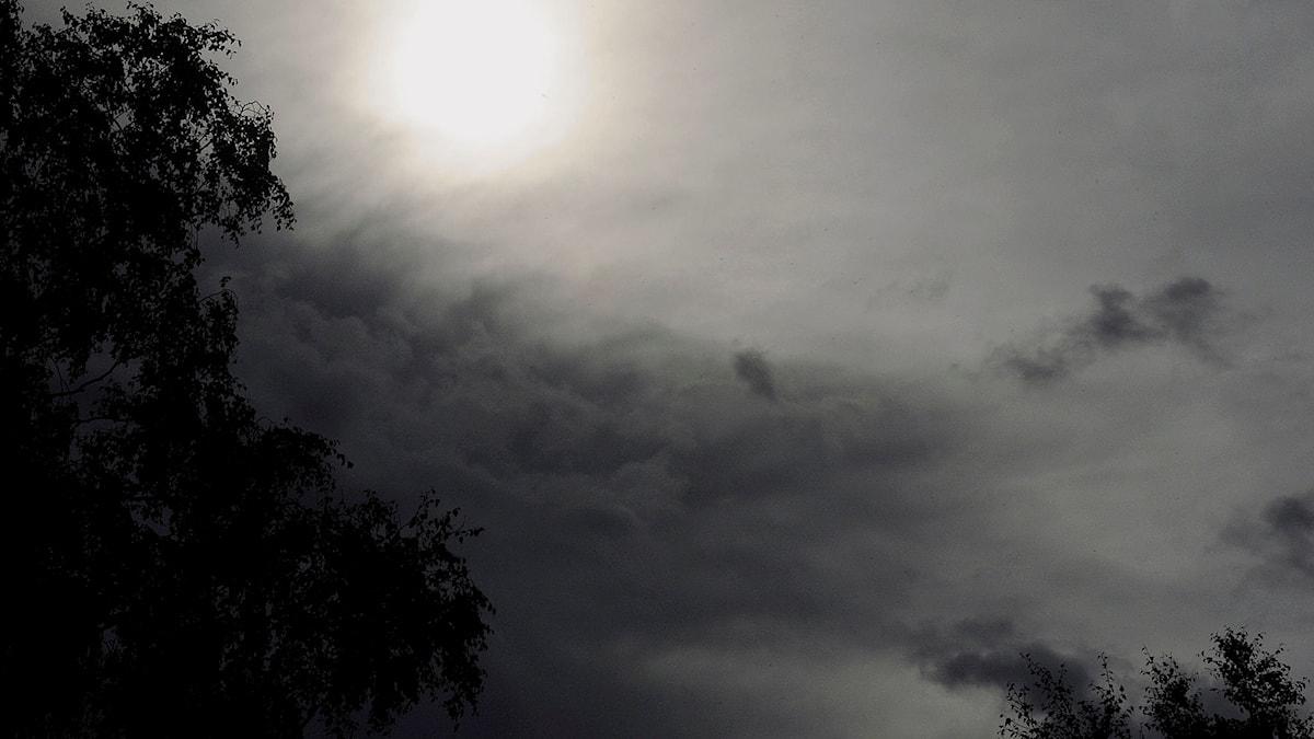Bild på regntungt moln.