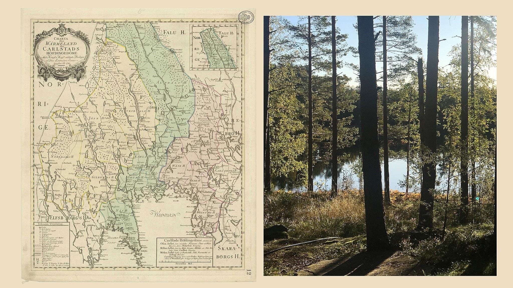 Karta på Värmland och bild på skog