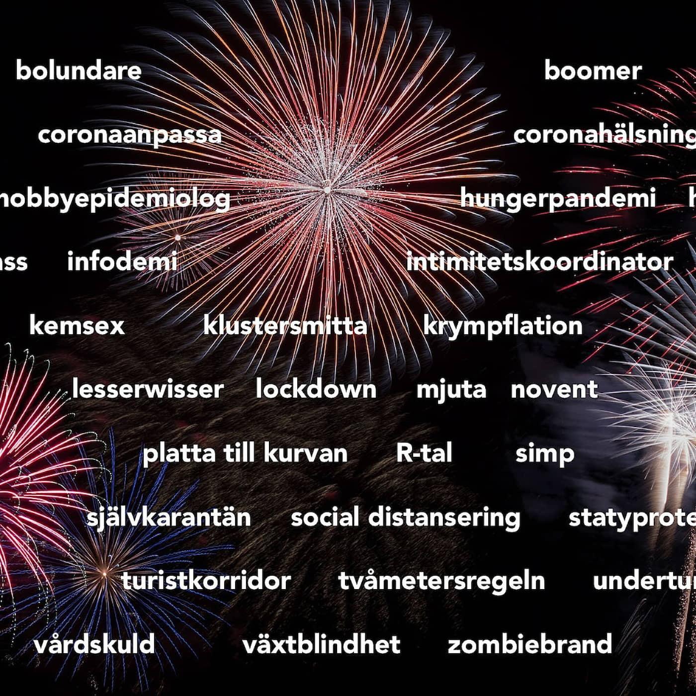 2020 – ett språkligt rekordår