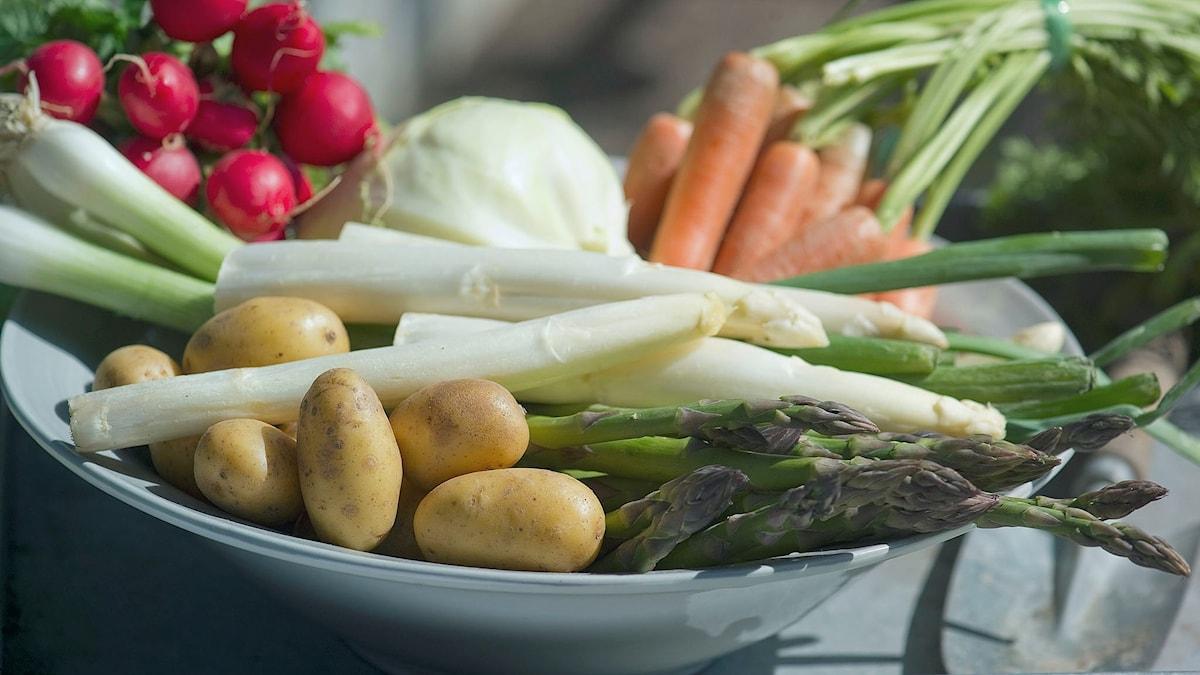 fat med grönsaker