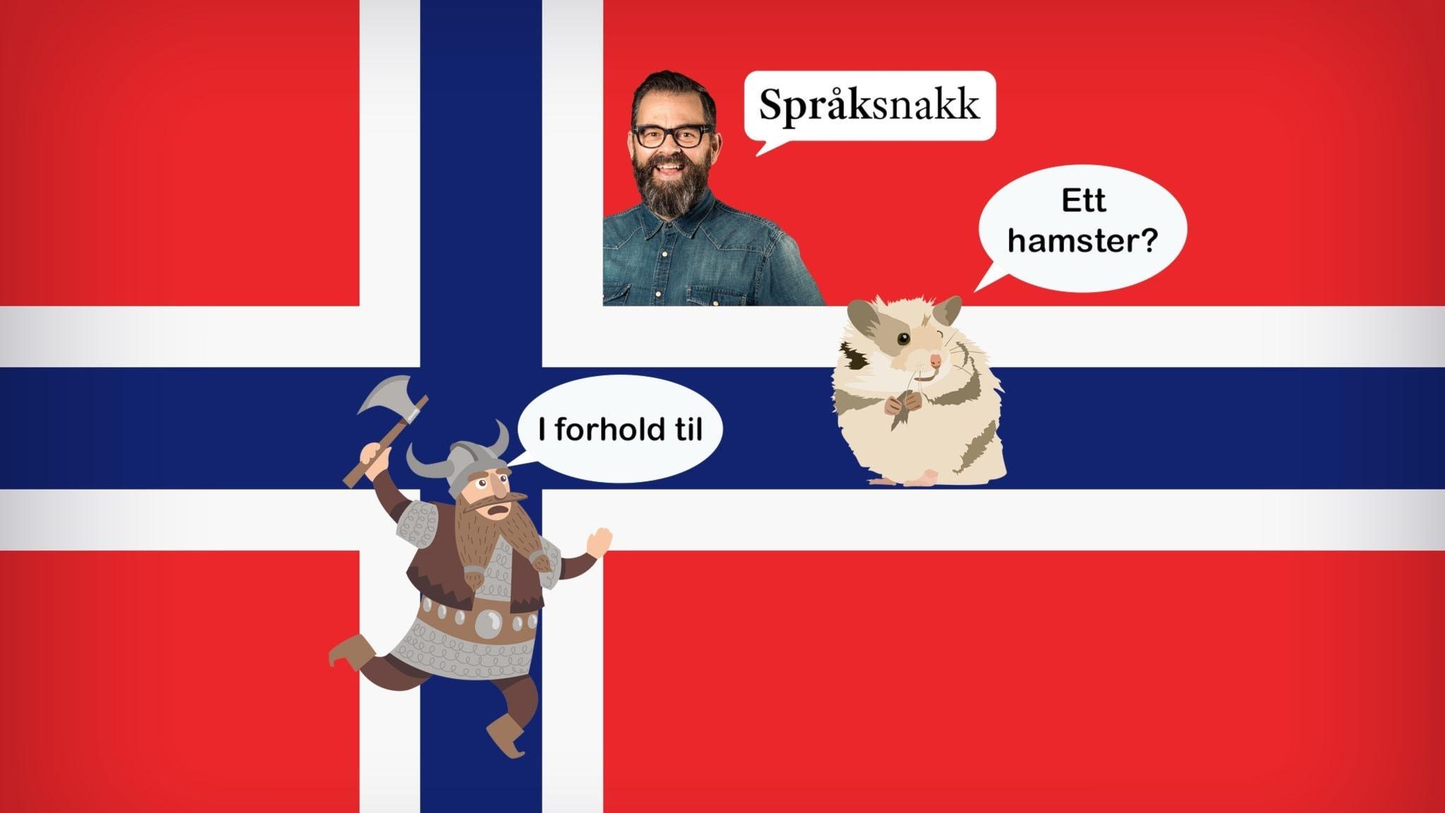"""Norsk flagga med inklippta bilder på Språksnakks programledare Klaus Sonstad, en hamster med pratbubbla som säger """"ett hamster?"""" och en viking som säger """"i forhold til."""