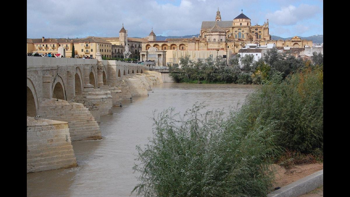 la Mesquita som den heter på spanska - sedd från den romerska bron över Guadalquivir.
