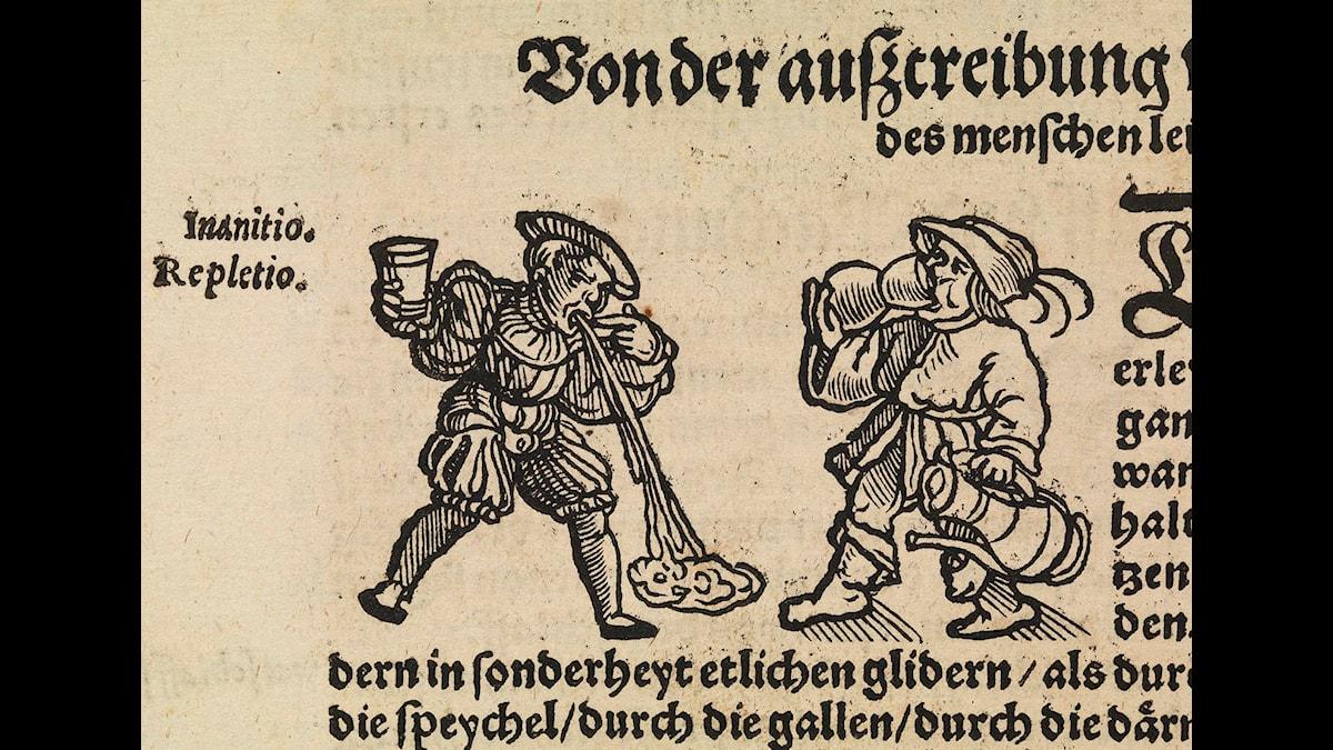 Träsnitt av drickande och spyende - Wellcome Bildbibliotek, Wikimedia CC
