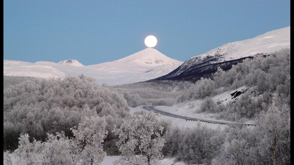 Björntoppen Arjeplog fullmåne. Ögonblicksbild tagen från sovrummet på Sandvikens Fjällgård. Fullmånen balanserar på Björntoppen.