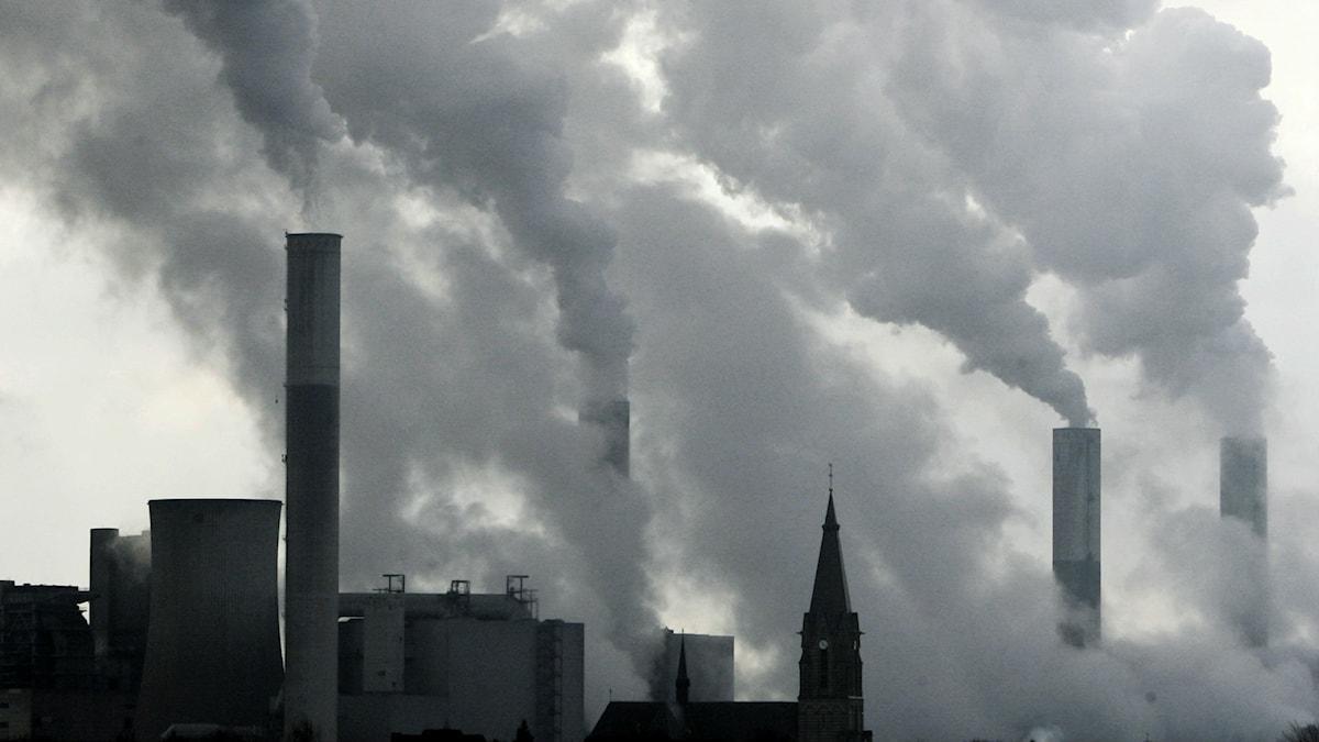Kraftig rök ur kolkraftverk i Tyskland