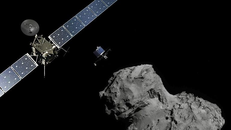 Rosetta nära kometen